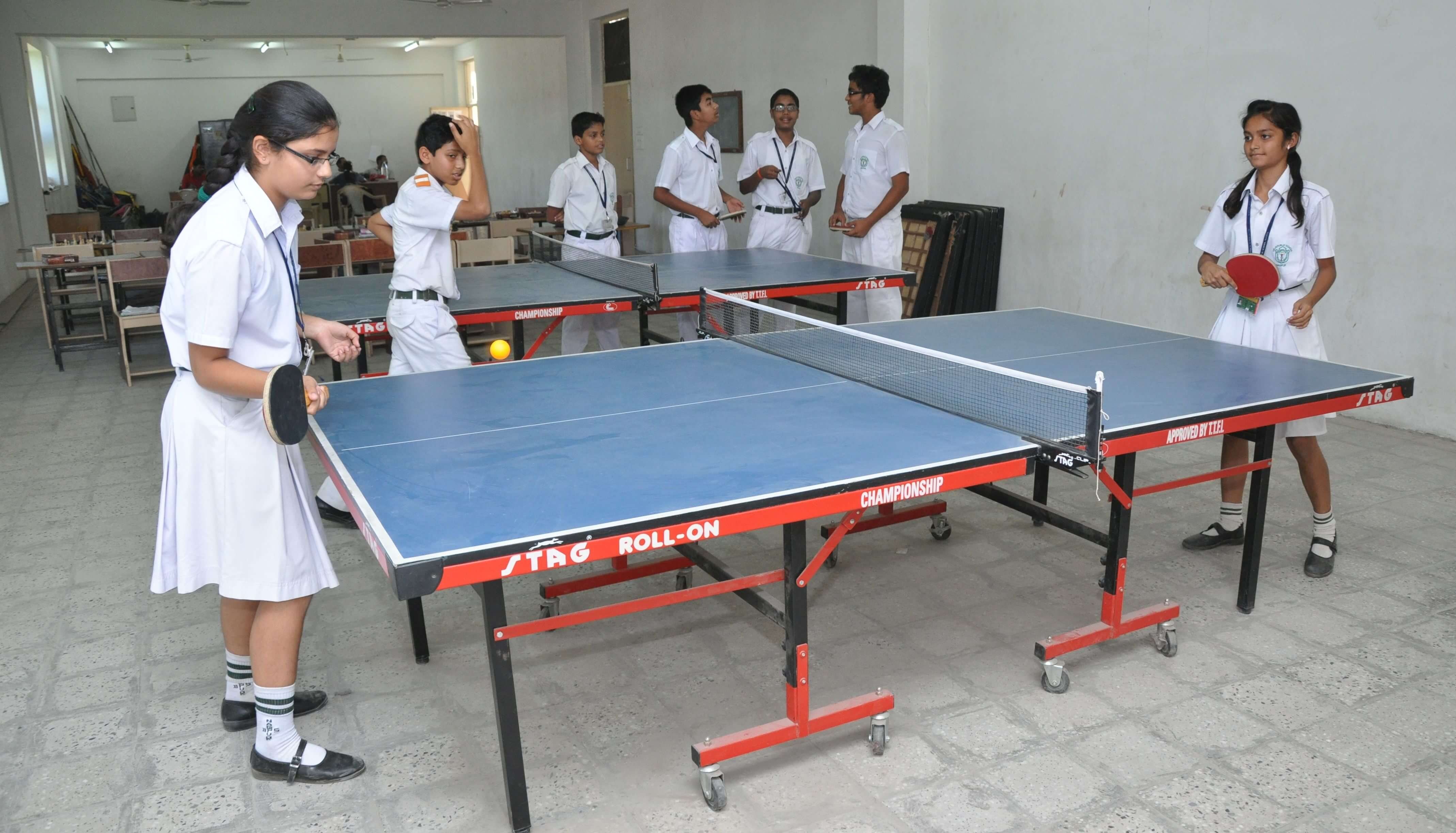 Indoor Sports - Table Tennis Table